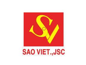 saoviet-logo
