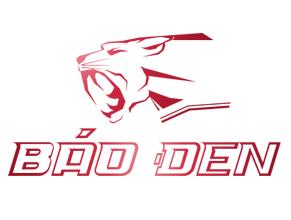 baoden-logistic-logo