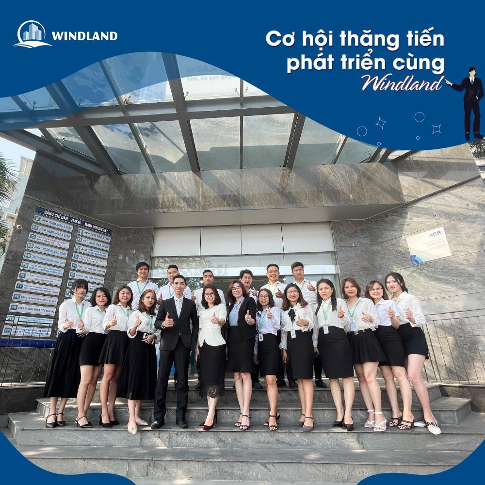 windland6